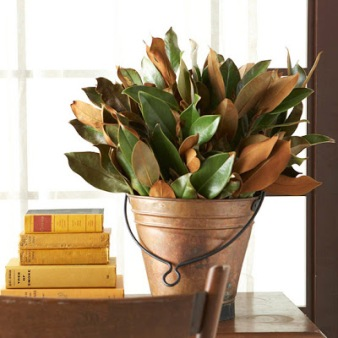 magnolia leaves in copper pail.jpg